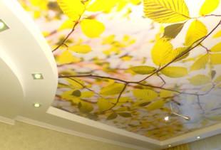 Какие фотообои украсят потолок?