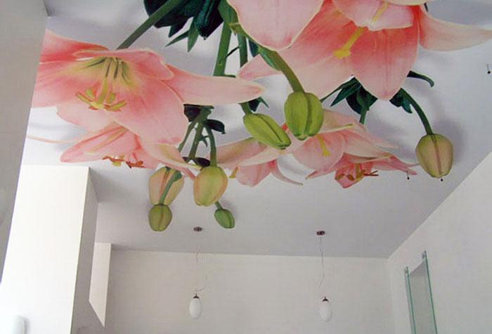 Объемное изображение на потолке