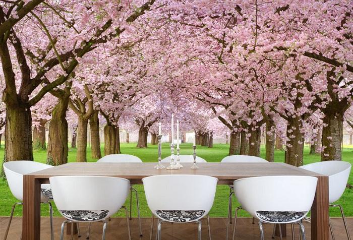 обои с цветущим деревом с розовыми цветками