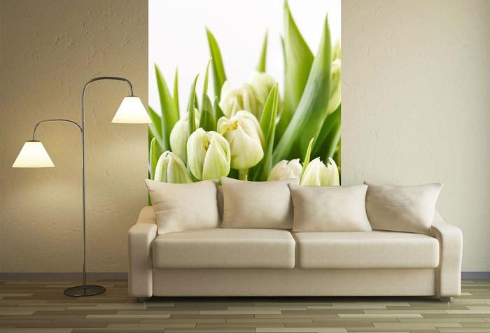 обои цветы тюльпаны