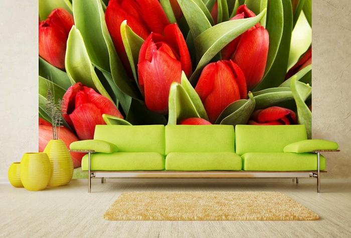 обои цветы красные тюльпаны