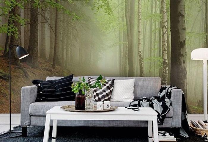 Фотообои с туманным лесом в гостиной