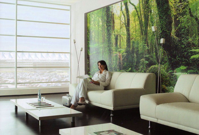Фотообои на тему природы в гостиной