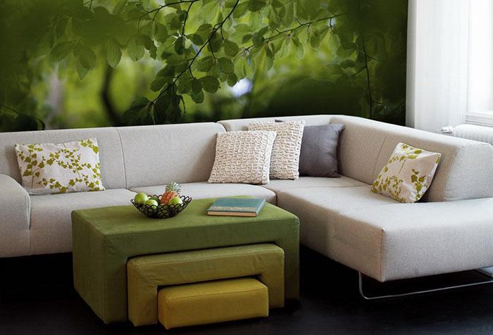 Фотообои с листвой в гостиной