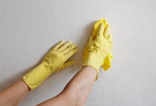 Какими средствами мыть моющиеся обои и как это делать правильно?